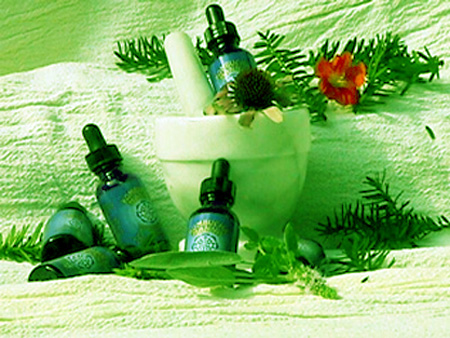 Manna Green Tea Extract bottles